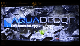 AquaDecor Commercial